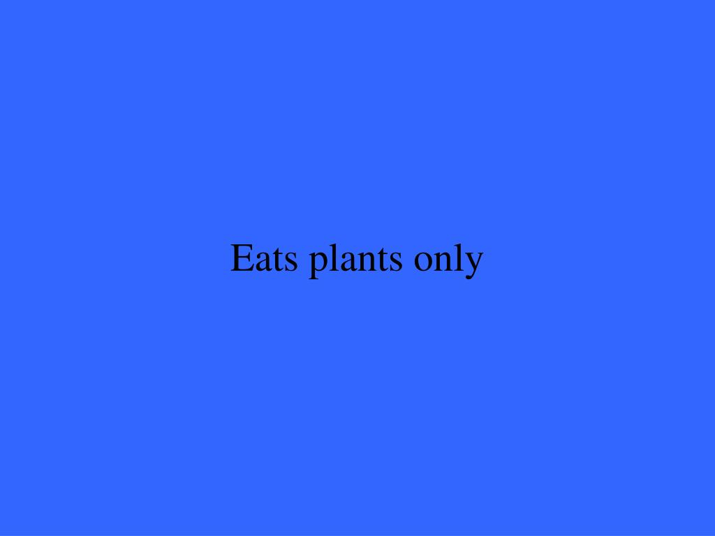 Eats plants only