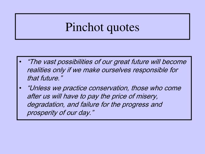 Pinchot quotes
