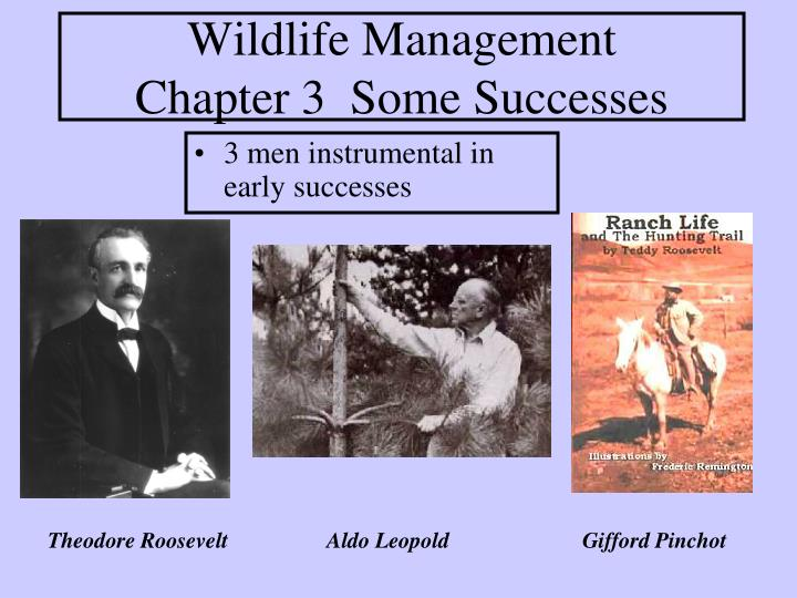 Wildlife management chapter 3 some successes