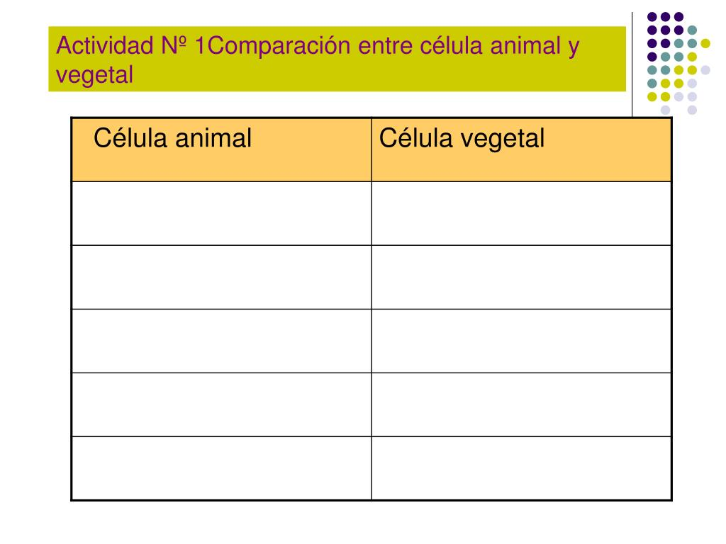 Actividad Nº 1Comparación entre célula animal y vegetal