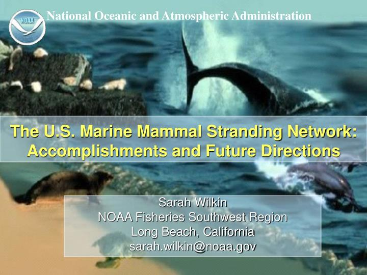 The u s marine mammal stranding network accomplishments and future directions
