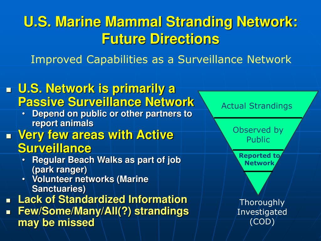 U.S. Network is primarily a Passive Surveillance Network