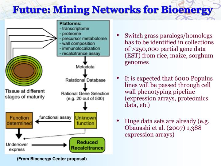 Future: Mining Networks for Bioenergy