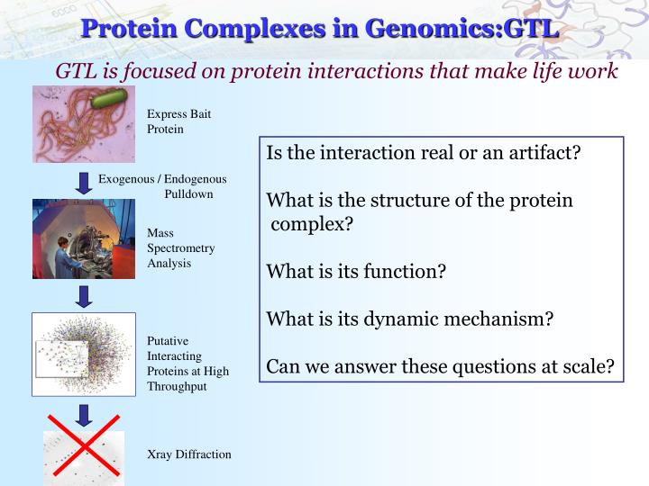 Protein Complexes in Genomics:GTL
