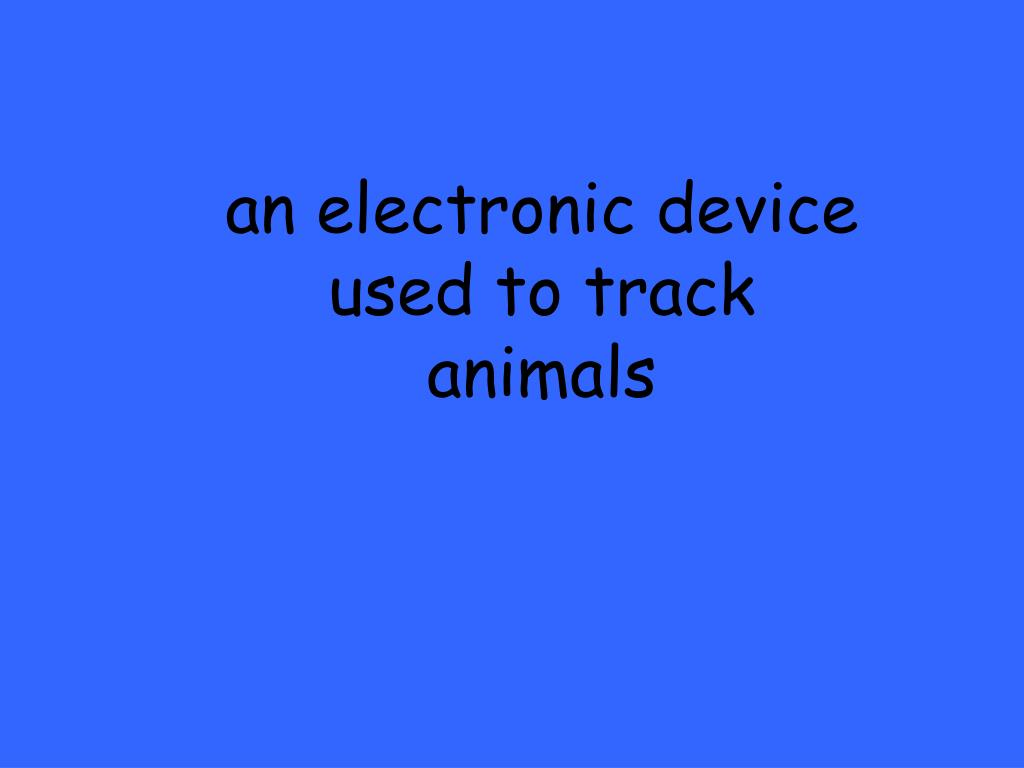 an electronic device used to track animals