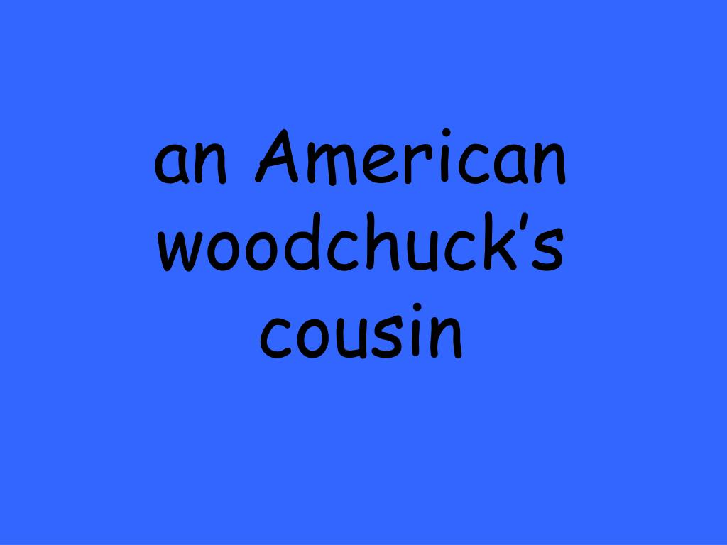 an American woodchuck's cousin