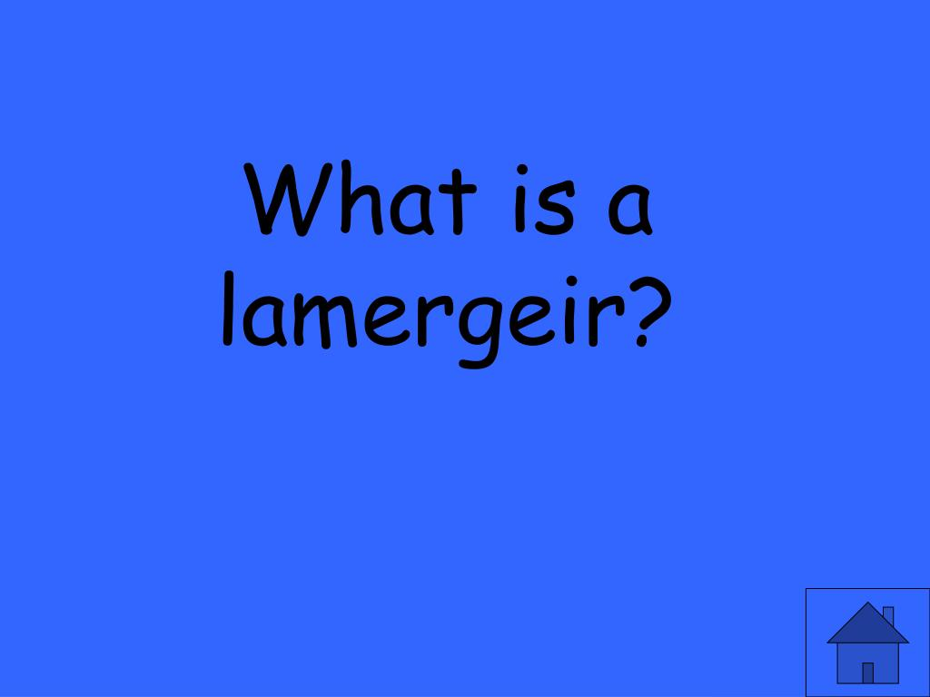 What is a lamergeir?