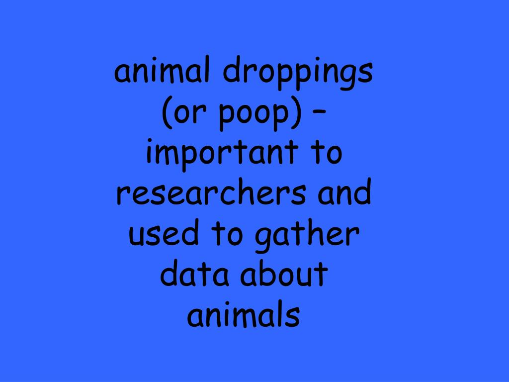animal droppings (or poop) – important to researchers and used to gather data about animals