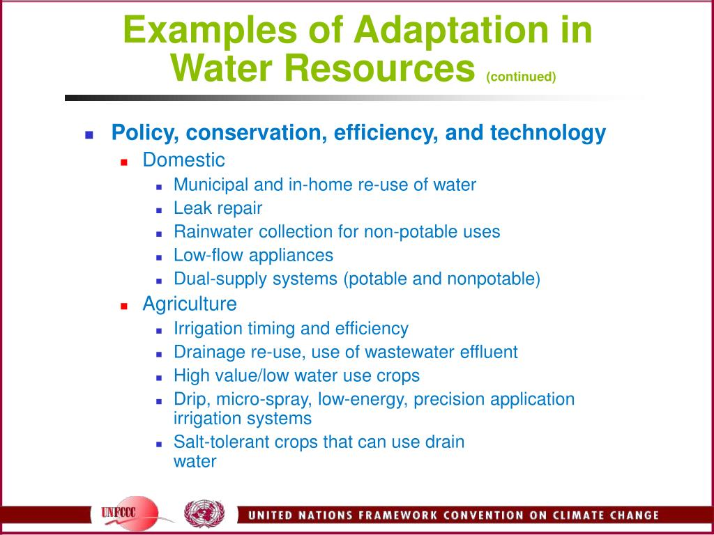 Examples of Adaptation in