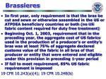 brassieres62