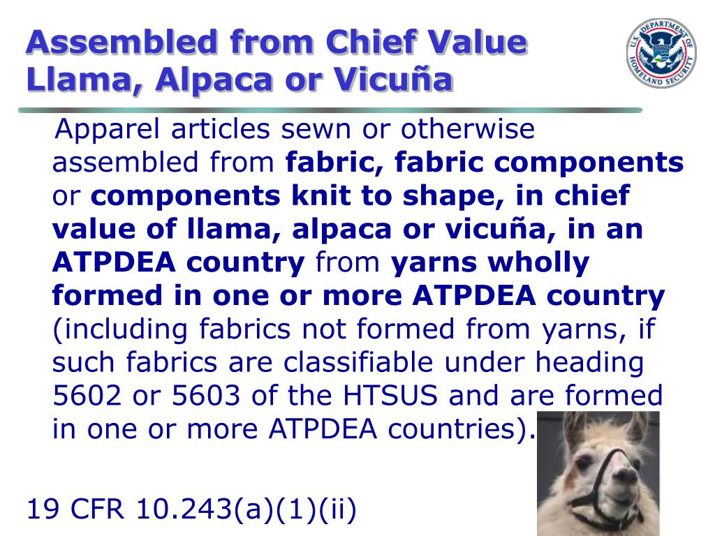 Assembled from Chief Value  Llama, Alpaca or Vicuña