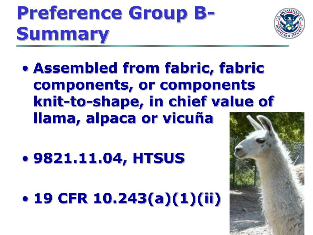 Preference Group B-Summary