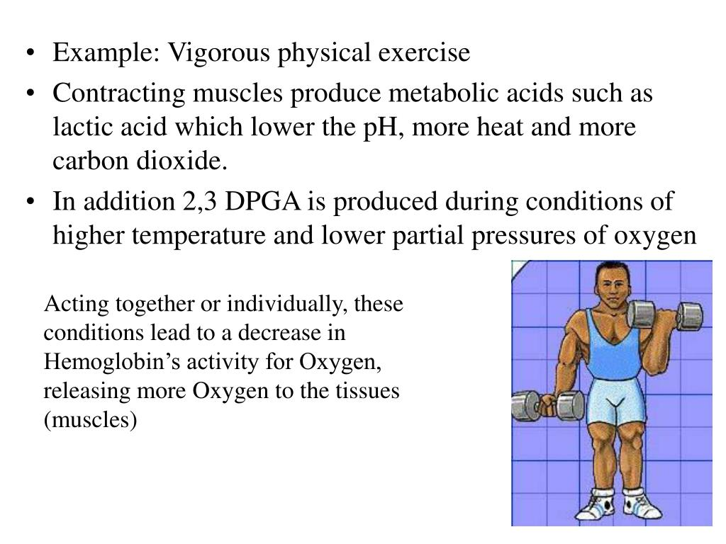 Example: Vigorous physical exercise