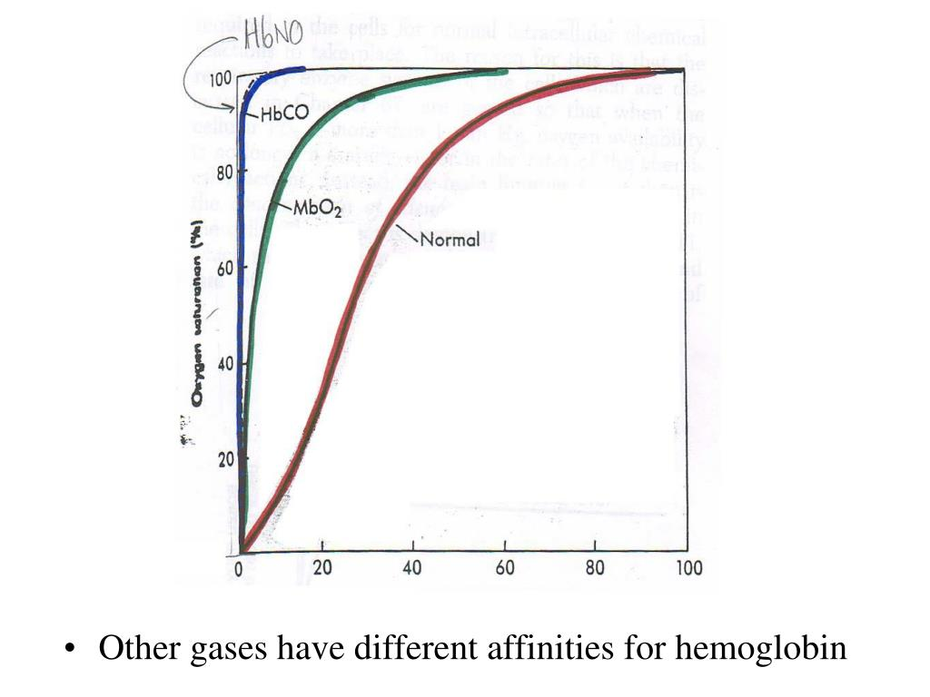 Other gases have different affinities for hemoglobin