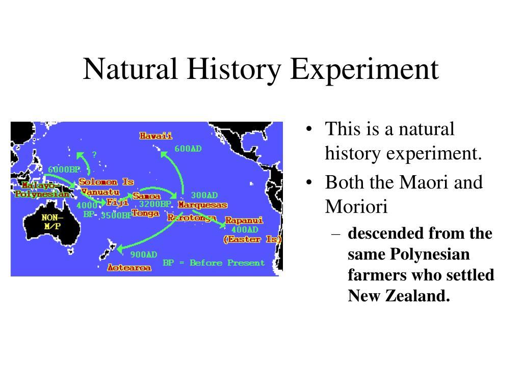 Natural History Experiment