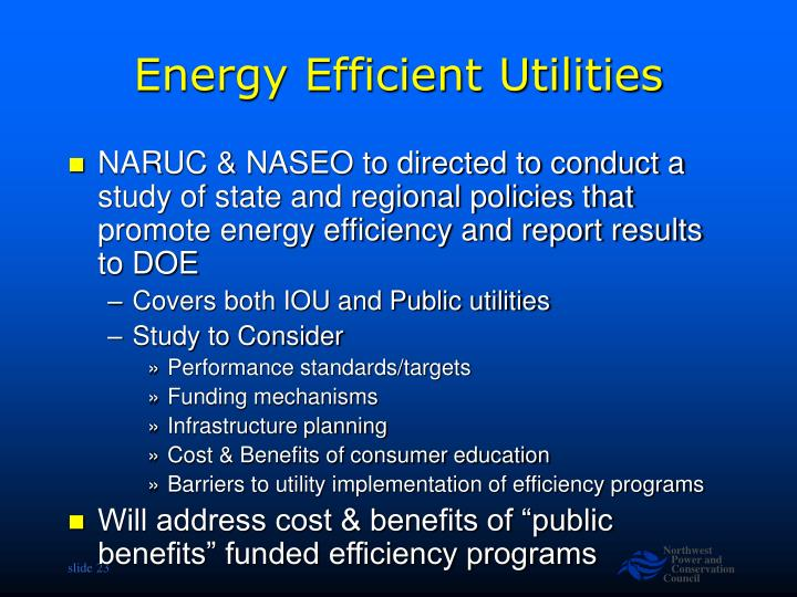 Energy Efficient Utilities