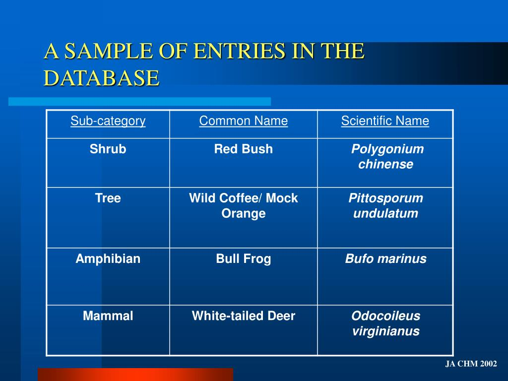 A SAMPLE OF ENTRIES IN THE DATABASE