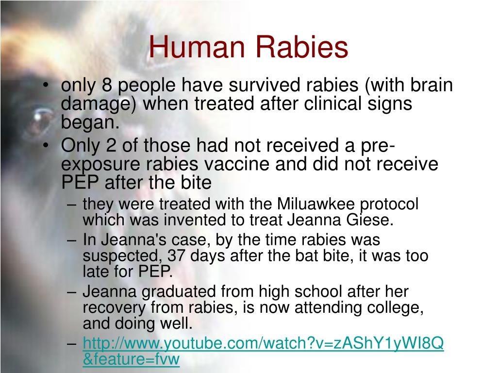 Human Rabies