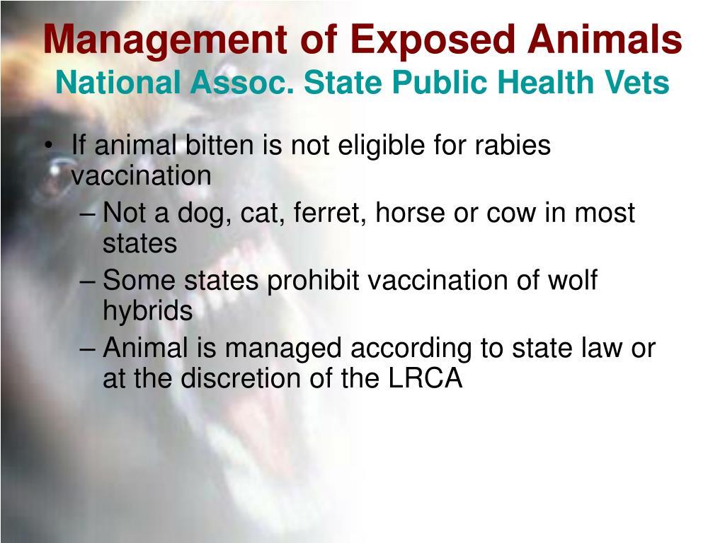 Management of Exposed Animals