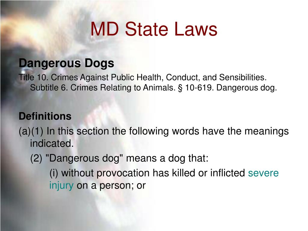 MD State Laws