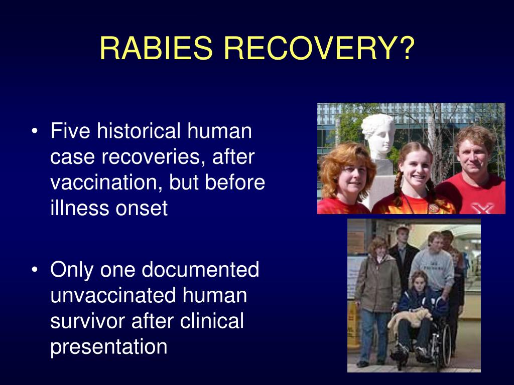 RABIES RECOVERY?