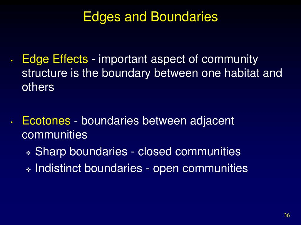 Edges and Boundaries
