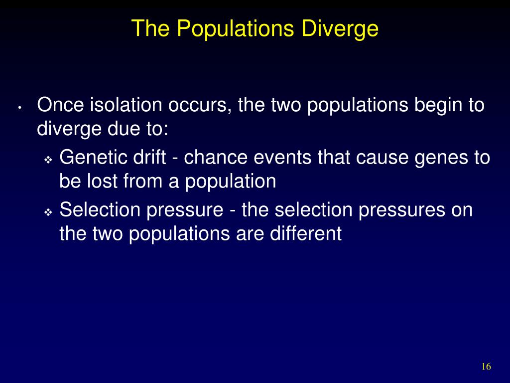 The Populations Diverge