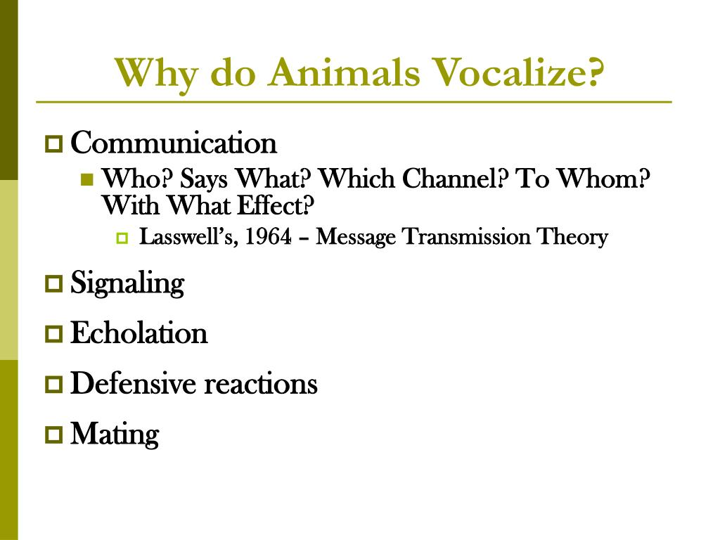 Why do Animals Vocalize?