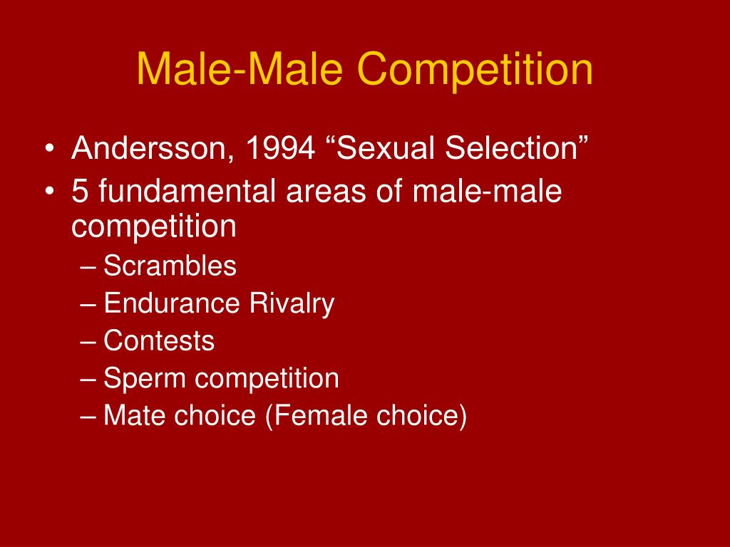Male-Male Competition