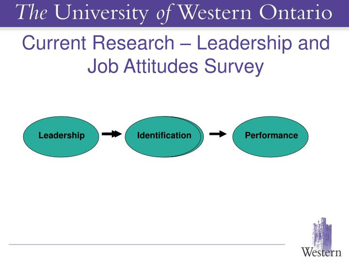 Current Research – Leadership and Job Attitudes Survey