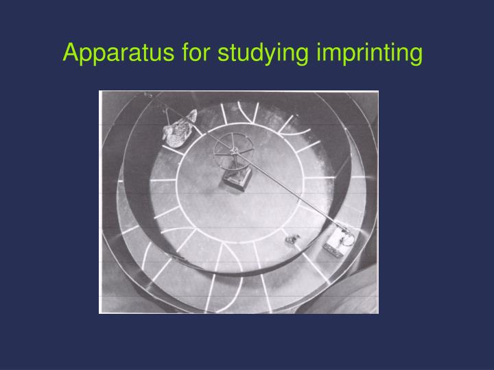 Apparatus for studying imprinting