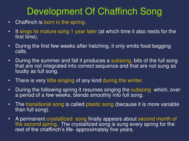 Development Of Chaffinch Song