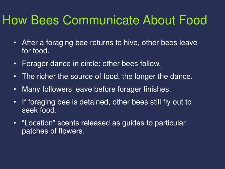 How Bees Communicate About Food