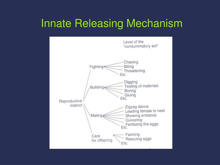 Innate Releasing Mechanism