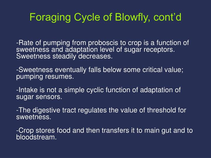 -Rate of pumping from proboscis to crop is a function of sweetness and adaptation level of sugar receptors. Sweetness steadily decreases.