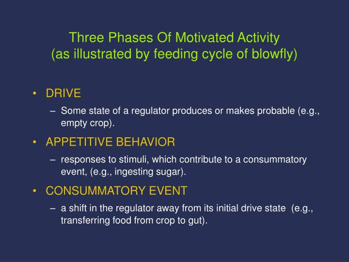 Three Phases Of Motivated Activity
