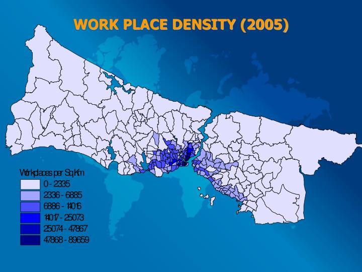 WORK PLACE DENSITY (2005)
