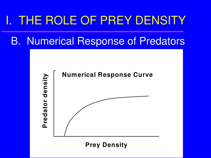 I the role of prey density3