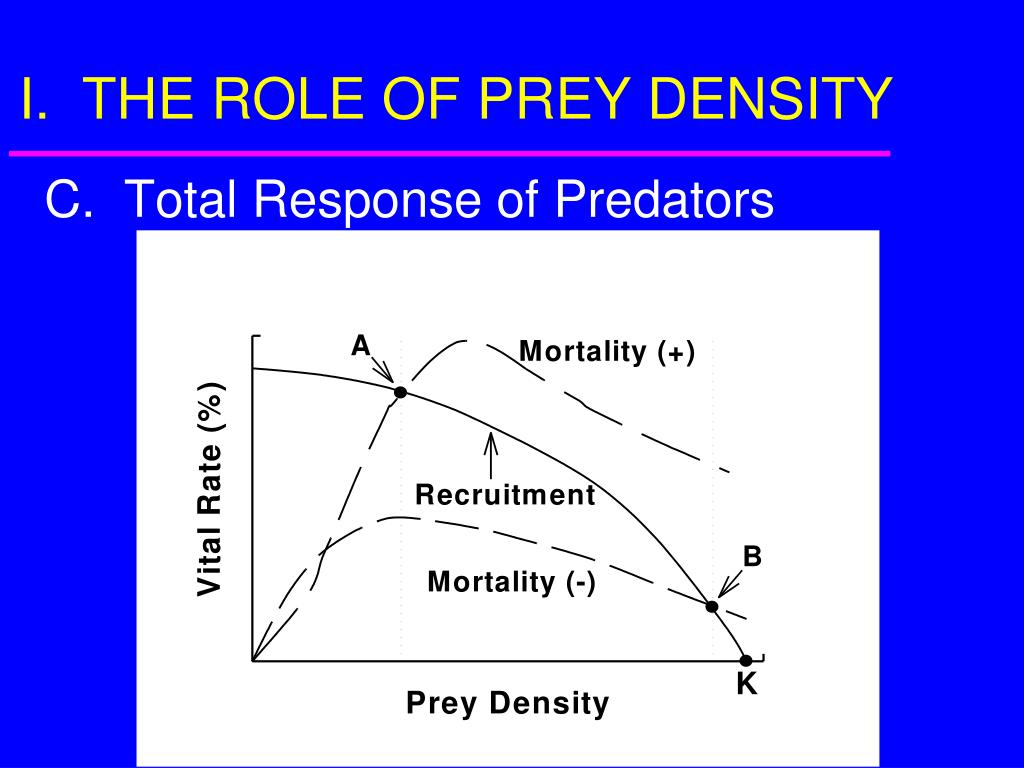I.  THE ROLE OF PREY DENSITY