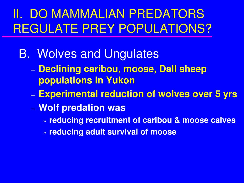 II.  DO MAMMALIAN PREDATORS REGULATE PREY POPULATIONS?