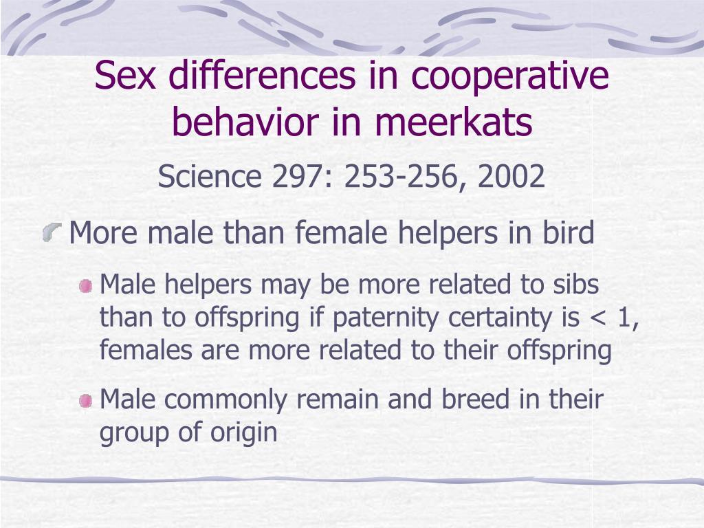 Sex differences in cooperative behavior in meerkats