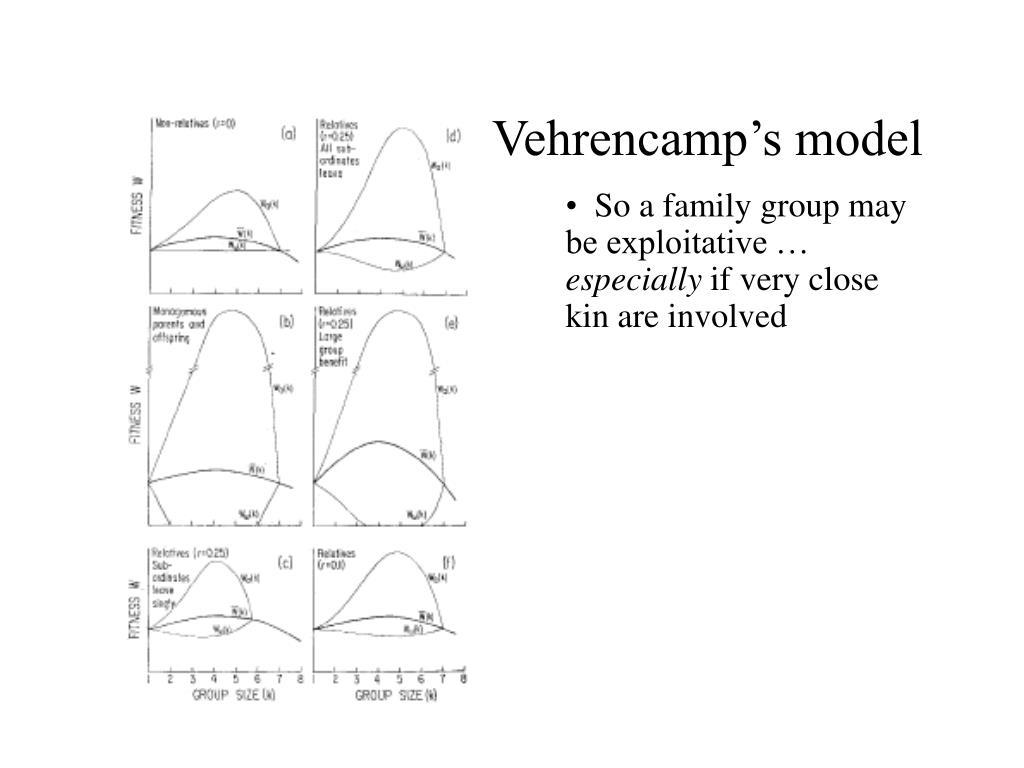 Vehrencamp's model