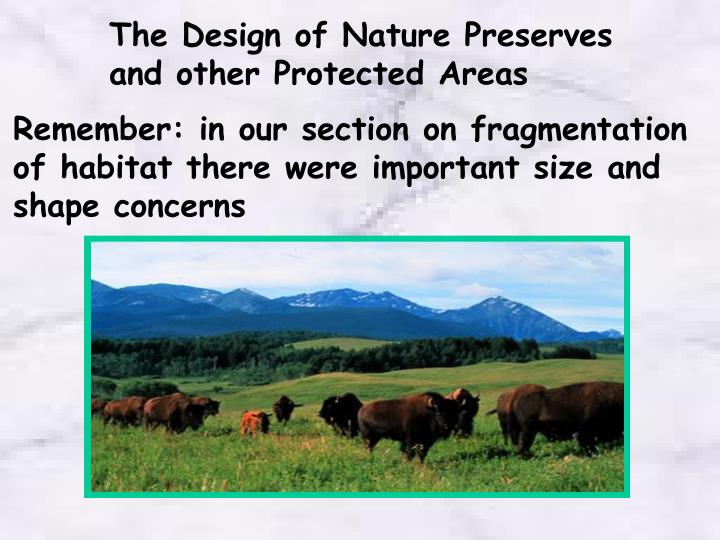 The Design of Nature Preserves and other Protected Areas