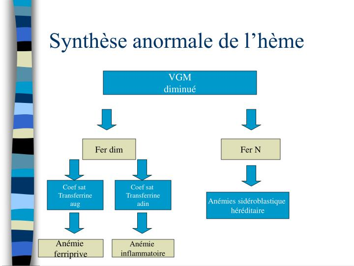 Synthèse anormale de l'hème