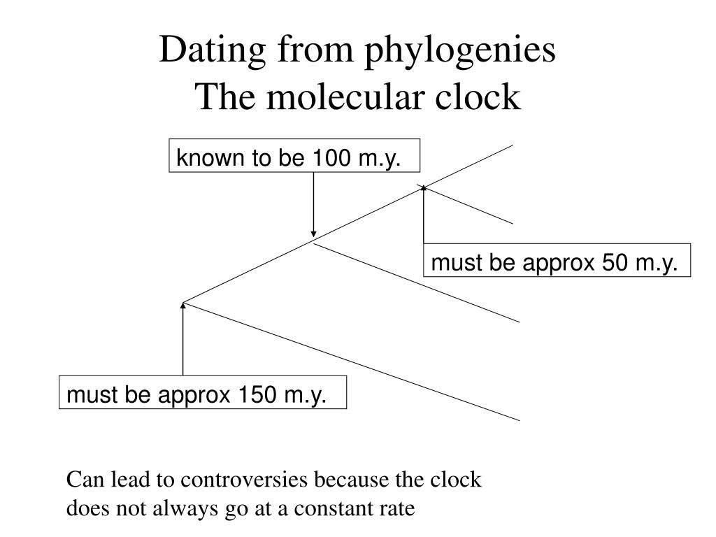 Dating from phylogenies