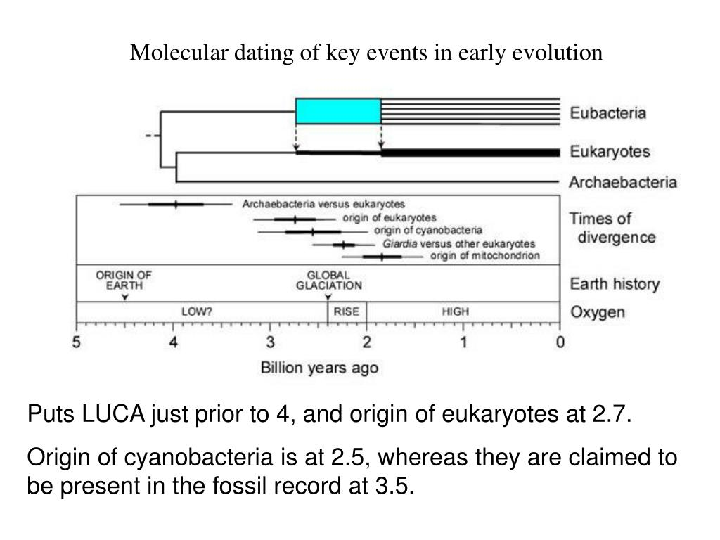 Molecular dating of key events in early evolution