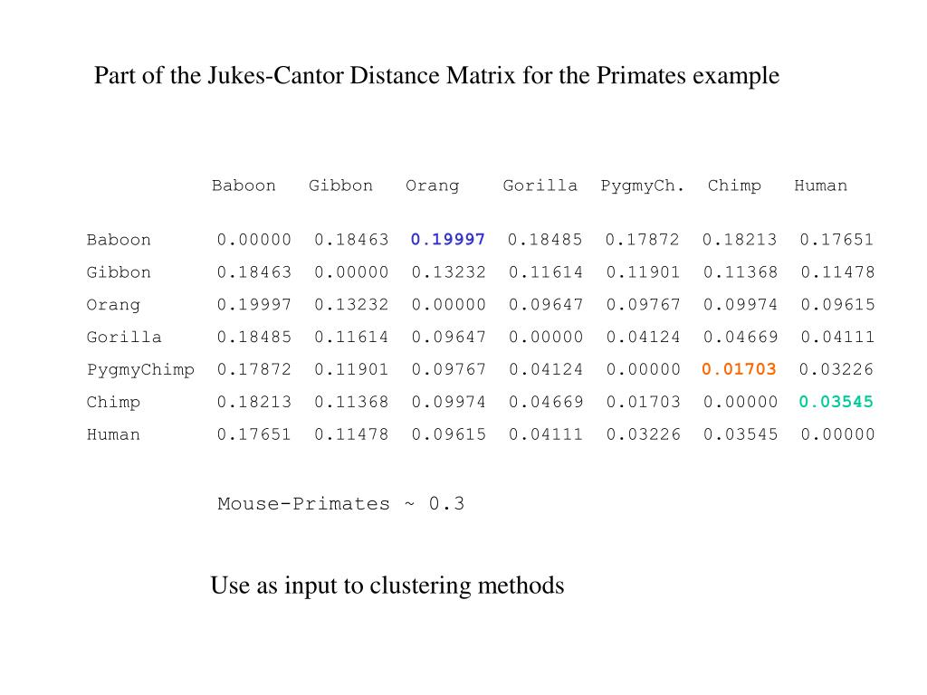 Part of the Jukes-Cantor Distance Matrix for the Primates example