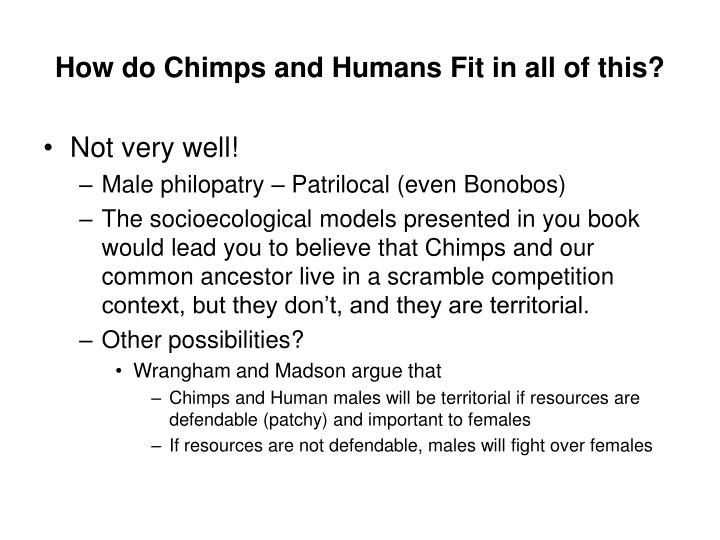 How do Chimps and Humans Fit in all of this?