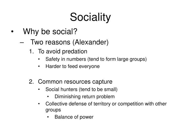 Sociality