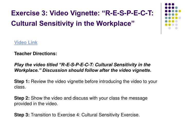 "Exercise 3: Video Vignette: ""R-E-S-P-E-C-T: Cultural Sensitivity in the Workplace"""
